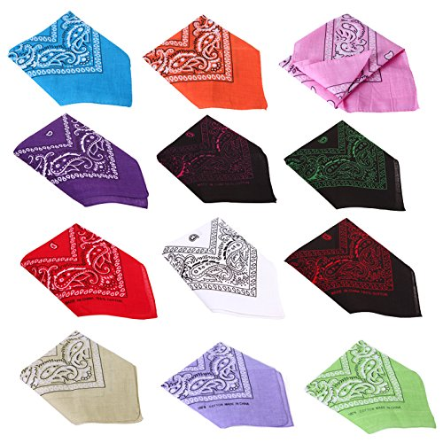 Bandit Costume For Dog (HDE 12 Pack Assorted Cotton Bandana Paisley Print Headwrap Handkerchief (Mix 2))