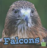 Falcons, Ashley P. Watson Norris, 1429686065