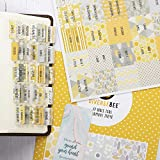 DiverseBee Laminated Bible Tabs