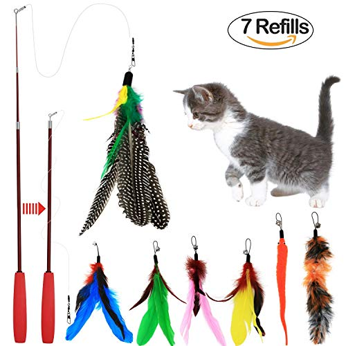 (Bascolor Retractable Cat Toys Interactive Feather Teaser Wand Toy with 7 Refills Feathers Birds Worms Catcher for Cats Kitten)