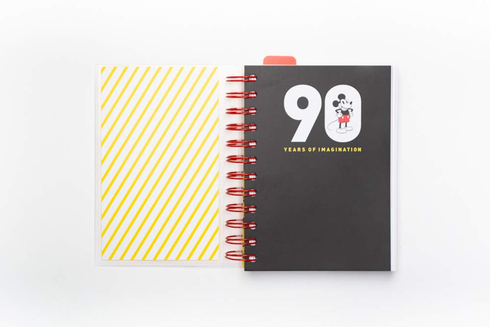 Grupo Erik Editores AGEDP1908 – Year Planner 2019 with Mickey 90 Design, Day Payment