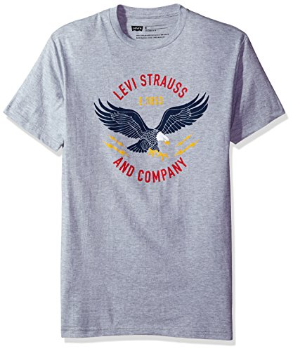levis-mens-fakir-t-shirt-with-eagle-graphic-heather-grey-small