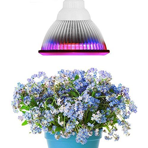 Superdream E27 12W Led Grow Light TT-GL20 Red Blue LED Lights for Plants in Garden Greenhouse