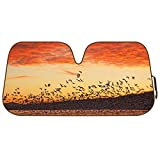 Double Bubble Auto Sun Shade for Car SUV Truck - Silhouette Flock of Birds at Sunset - Jumbo Folding Accordion
