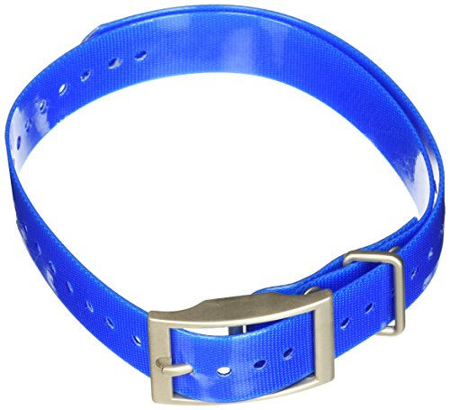 Garmin 1 Inch Dog Collar Blue