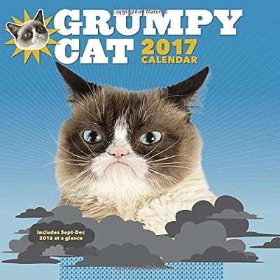 2017 Wall Cal: Grumpy Cat