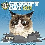Grumpy Cat, Wall Calendar 2017 (Calendars 2017)