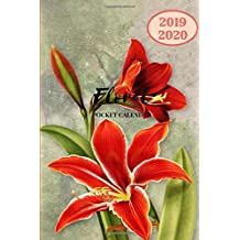 2019 2020 Floral Pocket Calendar: Two Years Planner; Small Mini Monthly Journal With Address Book & Notes Section; Purse Notebook With Inspirational Quotes To Put Personal Goals