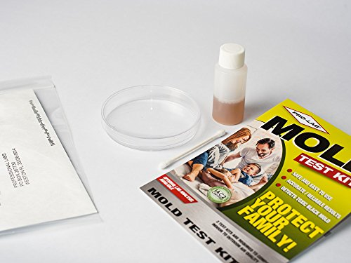 Pro lab mo109 mold do it yourself test kit handmade makers pro lab mo109 mold do it yourself test kit solutioingenieria Choice Image