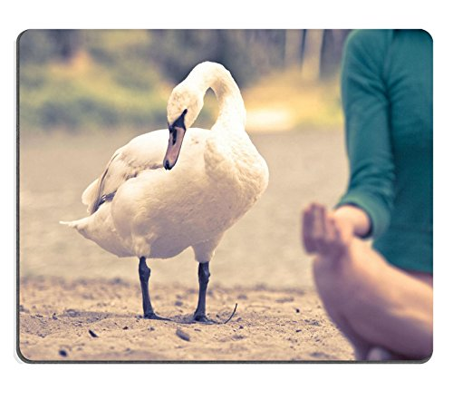 Luxlady Gaming Mousepad Photo Of A Swan Standing Near A Woman Meditating In Nature IMAGE ID 5394226