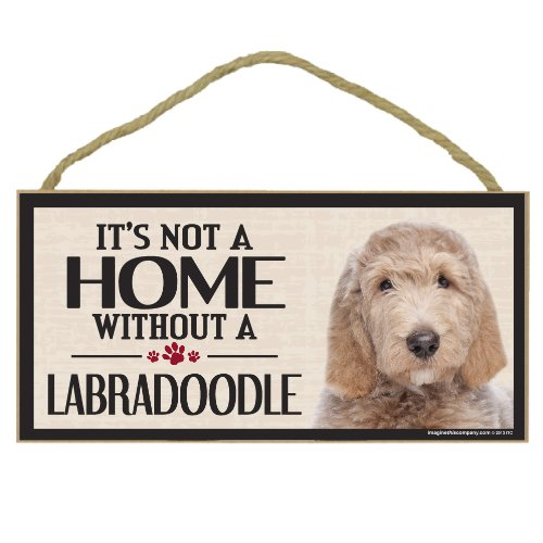 Sea Lion Costumes For Dogs - Imagine This Wood Sign for Labradoodle