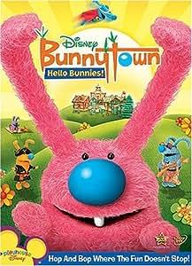 Bunnytown:  Hello Bunnies