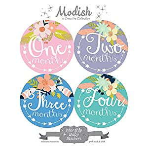 12 Monthly Baby Stickers, Tribal, Flowers, Feathers, Arrows, Girl, Baby Belly Stickers, Monthly Onesie Stickers, Baby Month Stickers, Arrows, Flowers, Tribal, Pink, Mint, Purple, Teal, Blue, Girl 6