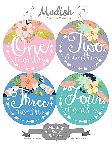 12-Monthly-Baby-Stickers-Tribal-Flowers-Feathers-Arrows-Girl-Baby-Belly-Stickers-Monthly-Onesie-Stickers-Baby-Month-Stickers-Arrows-Flowers-Tribal-Pink-Mint-Purple-Teal-Blue-Girl