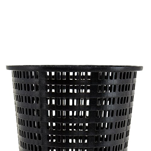 - Hayward Leaf Canister Basket - Black AXW431ABK