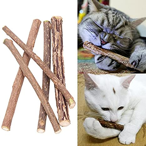 Swinging Vine 25 Unidades de Dientes de Limpieza para Gatos, Hierba gatera, Gato,