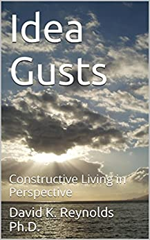 Constructive Living : Idea Gusts: Constructive Living in Perspective - Kindle ...