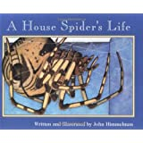 A House Spider's Life (Nature Upclose (Paperback))