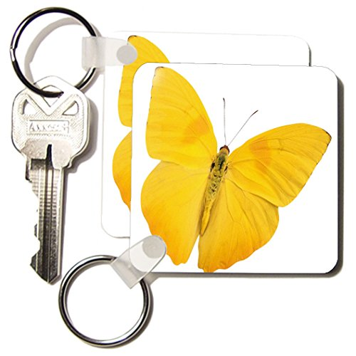 - 3dRose Butterfly Yellow - Key Chains, 2.25 x 4.5 inches, set of 2 (kc_33264_1)