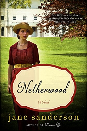 Download Netherwood: A Novel pdf