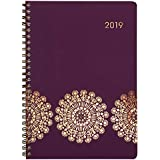 """Cambridge 2019 Weekly & Monthly Planner / Appointment Book, 5"""" x 8"""", Small, Sun Dance (5051-200)"""