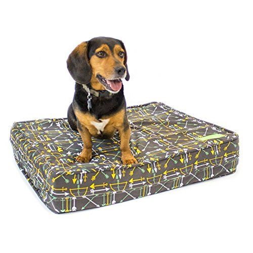 Premium Memory Foam Dog Beds with Removable Cotton Outer Cover and Waterproof Interior | Perfect for Small Dogs and Medium Dogs | Proudly Made in the USA | Bows & Arrows, Medium (27