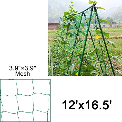 Mr.Garden Netting Reinforced Edge Support for Climbing Plant Trellis Netting Garden Netting Green 3.9''-27 W12'xL16.5' by Mr Garden