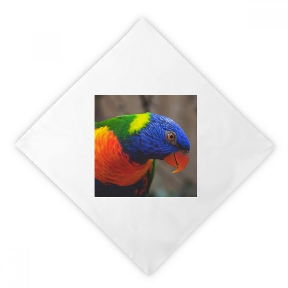 Pcture Terrestrial Organism Animal Parrot Dinner Napkins Lunch White Reusable Cloth 2pcs