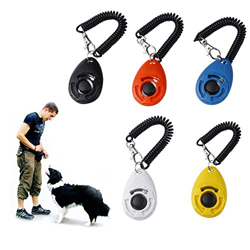 QIBOX 5-Pack Dog Training Clickers with Wrist Strap – Pet Accessories Big Button Pet Training Clicker Set for Cat, Bird, Chicken, Sheep, Horse [5 Colors of 2017 Latest Upgrade Version]