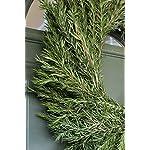 Fresh-Rosemary-Wreath-20-free-shipping