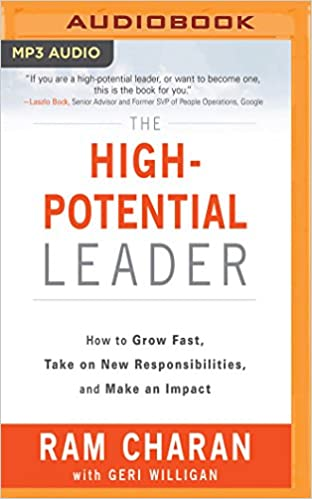 the highpotential leader how to grow fast take on new responsibilities and make an impact