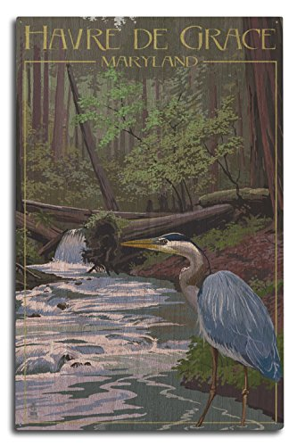 Lantern Press Havre De Grace, Maryland - Blue Heron in Forest (10x15 Wood Wall Sign, Wall Decor Ready to Hang)