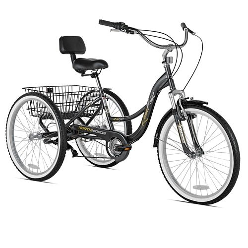 Northwoods Rock Point Adult Trike