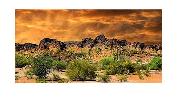 8x6.5ft Sunset Approaching The Arizona Scenic Polyester Photography Background Rock Mountains Arid Desert Cactus Backdrop Nature Scenery Landscape Wallpaper Studio Props