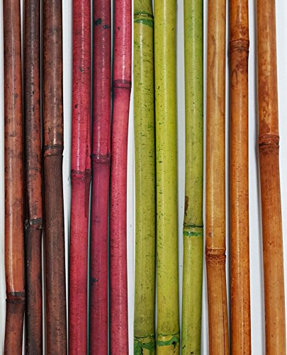 greenfloralcrafts-decorative-bamboo-poles-57-tall-nearly-5-ft-mixed-colors-12-bamboo-sticks-botanica