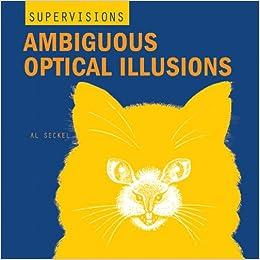 ambiguous optical illusions super visions