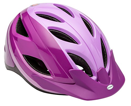 Schwinn SW78570-2 Pathway Youth Helmet, Purple