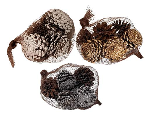 Family Holiday Autumn Winter Decorative Painted amp Natural Pine Cones Fall Winter Decorating Kit