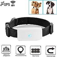 Hangang Rastreador GPS Collar GPS Perros para Perro, Gato o Cualquier Mascota, Resistente al Agua IP66, Baterí