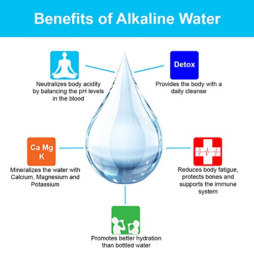 APEX Countertop Drinking Water Filter - Alkaline (Clear) by Apex (Image #3)