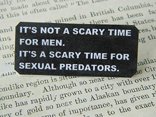 Lapel pin It's Not a Scary Time for Men, Its a Scary Time for Sexual Predators #metoo movement]()