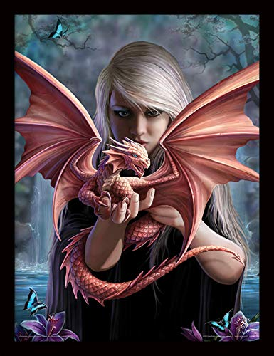 ANNE STOKES Dragonkin Memorabilia, Multi-Colour, 30 x 40 cm Pyramid International FP11111P-PL