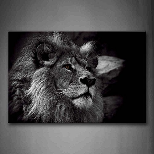 Lion Head Pictures - Crystal Emotion Black and White Gray Lion Head Portrait Wall Art Painting Pictures Print On Canvas Animal The Picture for Home Modern Decoration 12x18inch