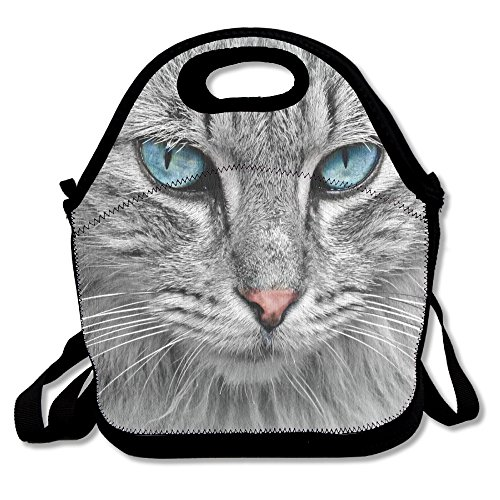FutongHuaxia Cat-animal-cat-portrait-mackerel Interesting Outdoor Lunch Bag Lunch Box Thermal Insulated Tote Cooler Lunch Pouch Picnic Bag Lunch Tote, For School Work Office,gift For Women