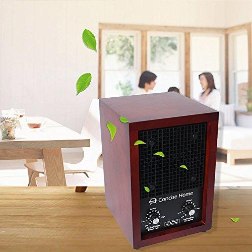 Sanqiao Ozone Generator Air Purifier Ionizer & Deodorizer with 2 Ceramic Ozone Plates