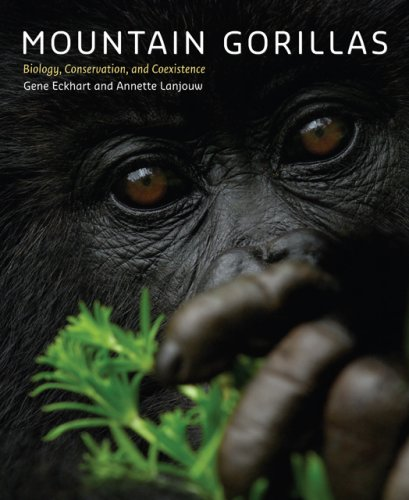 Mountain Gorillas: Biology, Conservation, and Coexistence (Mountain Gorilla)