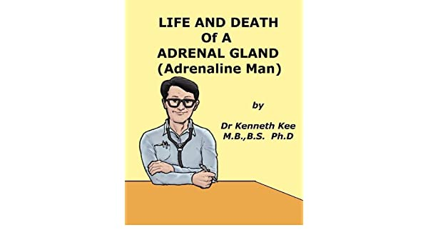 Life And Death of An Adrenal Gland (Adrenaline Man) (A Simple Guide to Medical Conditions)