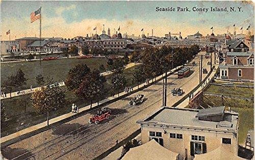 Seaside ParkConey Island, New York, NY, USA Postcard Post Card