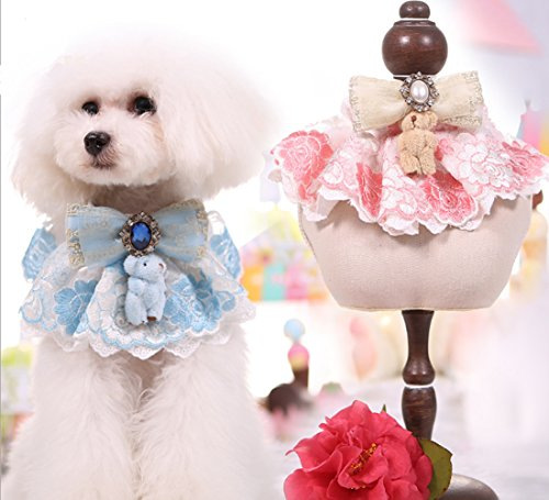 PETFAVORITES Girl Dog Collar, Lace Bowtie Cat Collar with Embroidered Flower & Rhinestone, Kitten Puppy Teacup Chihuahua Yorkie Clothes Wedding Holiday Costume Outfits Accessories (Blue, Size M) (Embroidered Nylon Tie)