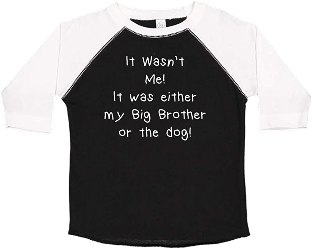 Toddler//Kids Raglan T-Shirt It Wasnt Me It was Either My Big Brother Or The Dog